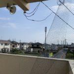 台風被害防鳥ネット